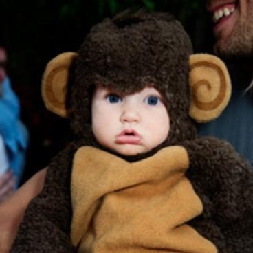 costume monkey