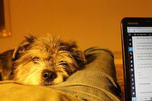 theuglyvolvo dog open letter 3